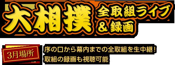 大相撲全取組ライブ&録画