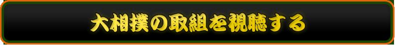 大相撲の取組を視聴する